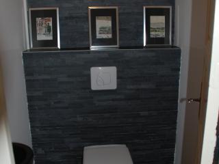 WC gris moderne avec un wc suspendu et lavabo vasque